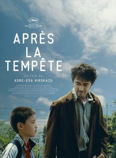 Affiche du film Apres La Tempete